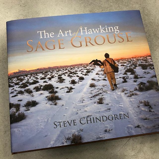 The Art of Hawking Sage Grouse